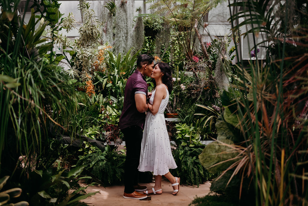 Washington DC botanical garden engagement session hillwood estates and gardens greenhouse kiss